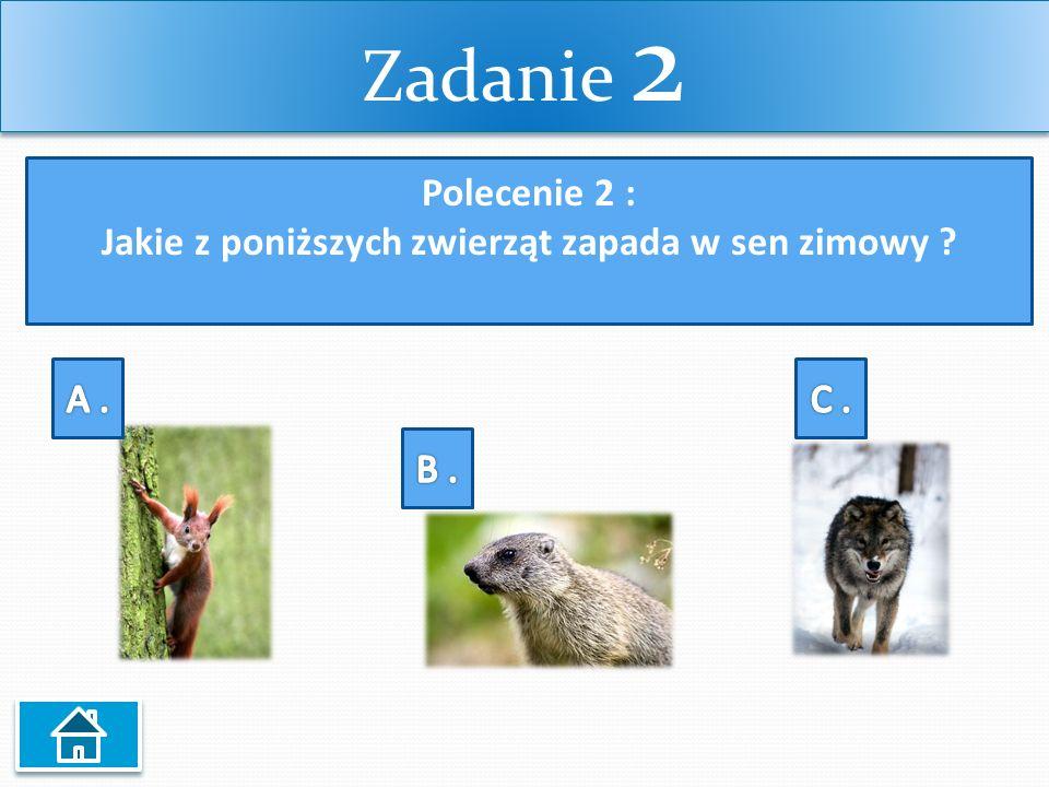 Zadanie 2 Polecenie 2 : Jakie z poniższych zwierząt zapada w sen zimowy ?