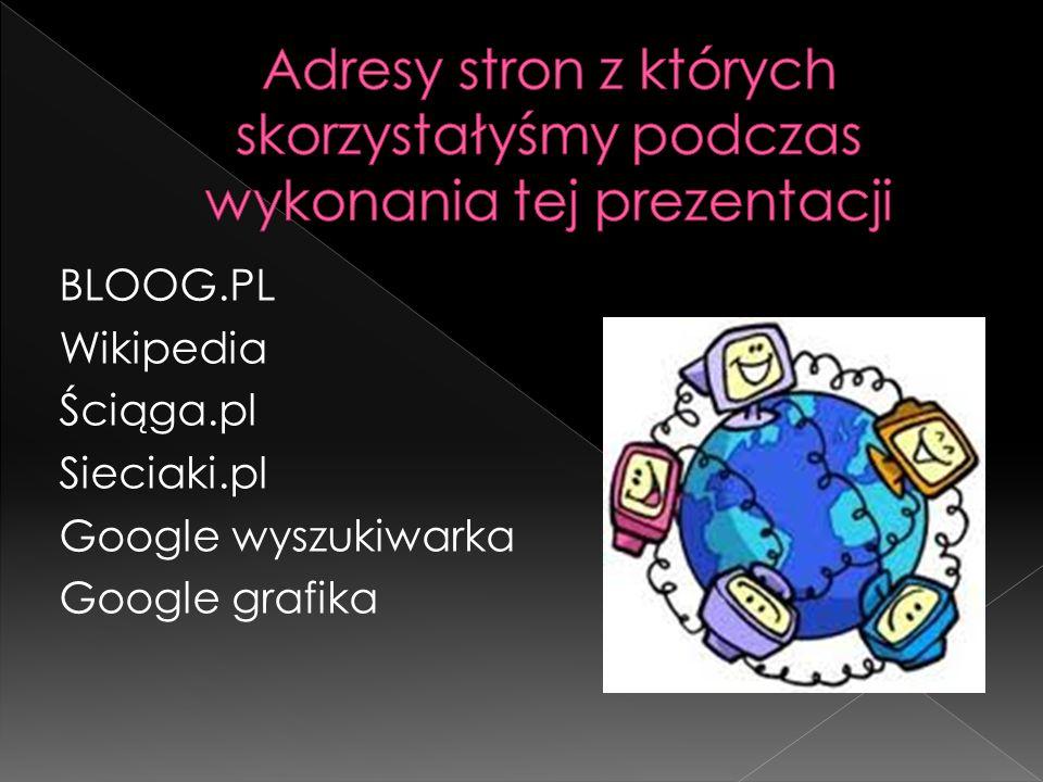 BLOOG.PL Wikipedia Ściąga.pl Sieciaki.pl Google wyszukiwarka Google grafika