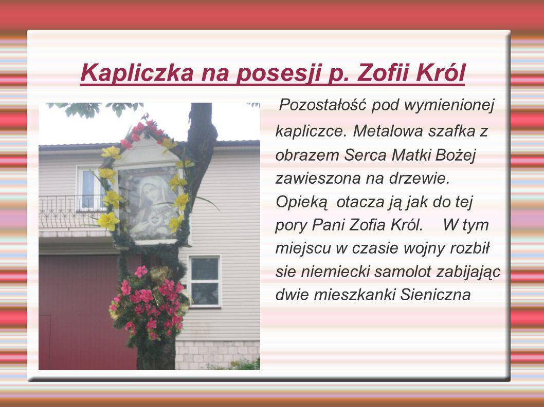 Kapliczka na posesji p. Zofii Król Pozostałość pod wymienionej kapliczce. Metalowa szafka z obrazem Serca Matki Bożej zawieszona na drzewie. Opieką ot