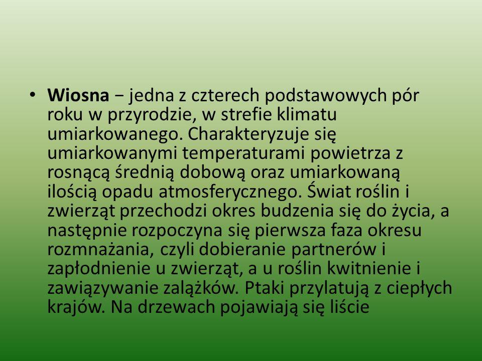 Data początku wiosny W XX wieku wiosna w strefie czasowej Polski rozpoczynała się zwykle 21 marca, zaś w miarę przybliżania się końca stulecia coraz częściej 20 marca.