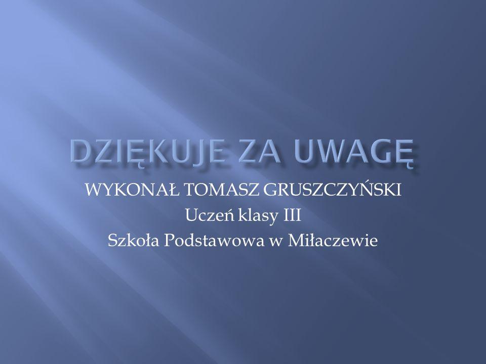 WYKONAŁ TOMASZ GRUSZCZYŃSKI Uczeń klasy III Szkoła Podstawowa w Miłaczewie