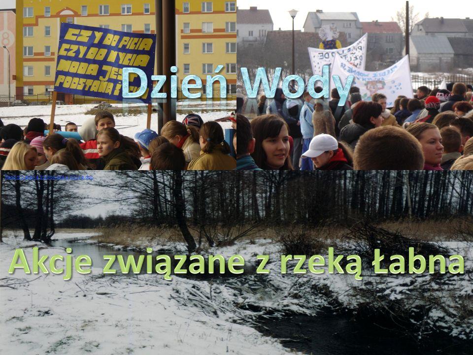 Raport o stanie środowiska w Kolnie.doc