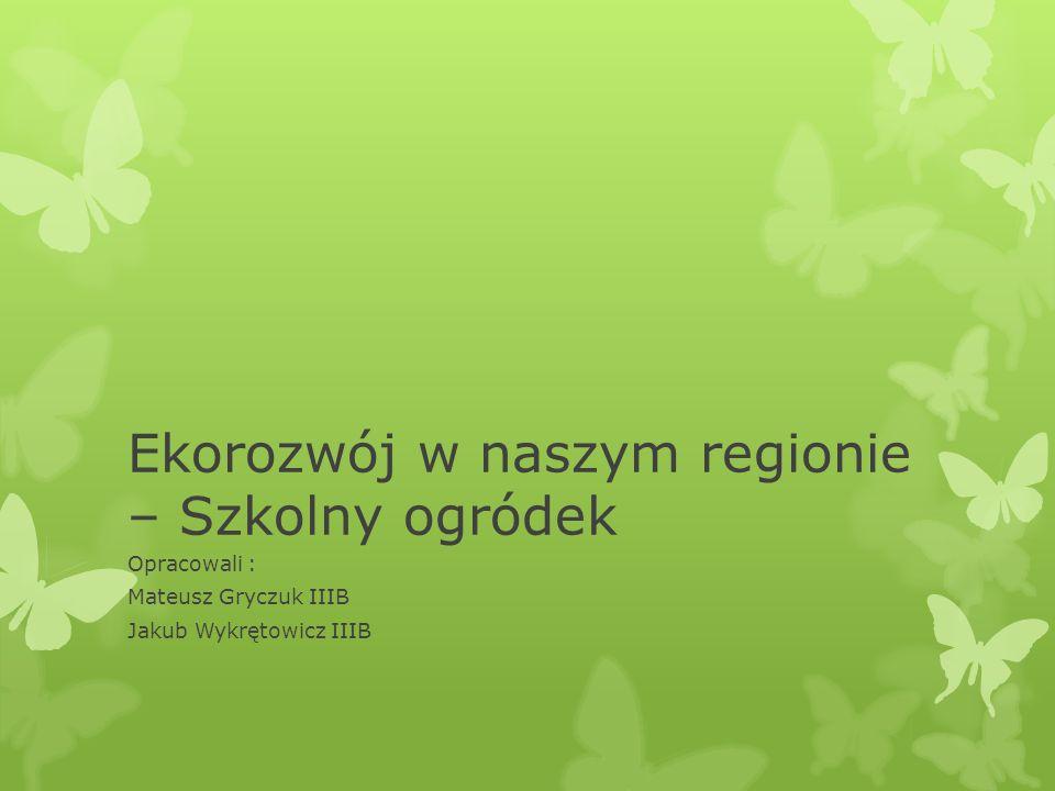 Ekorozwój w naszym regionie – Szkolny ogródek Opracowali : Mateusz Gryczuk IIIB Jakub Wykrętowicz IIIB