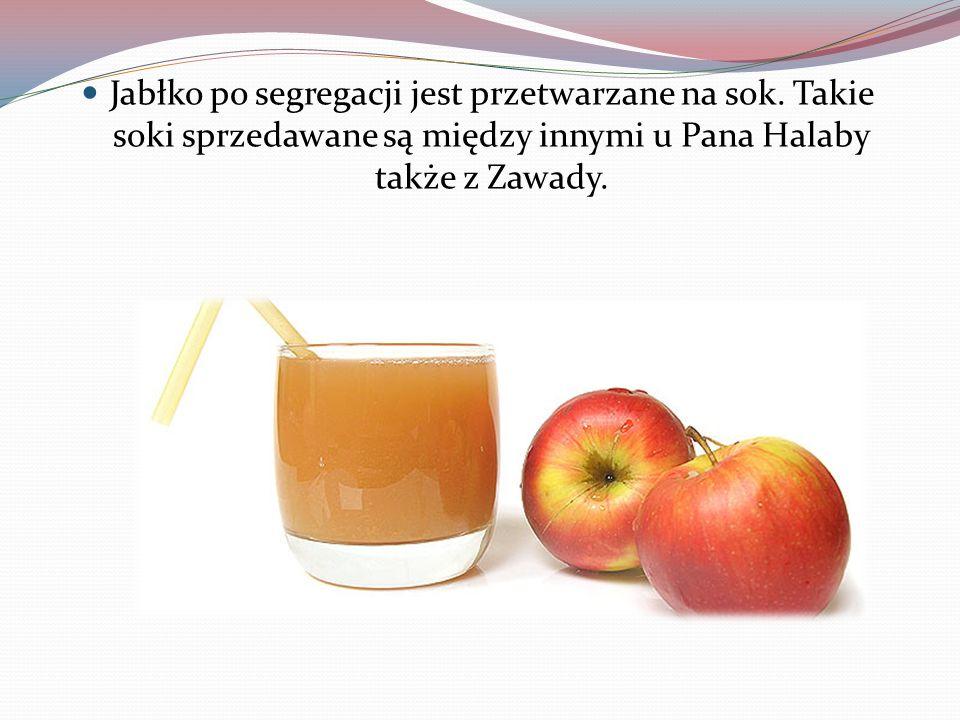 Jabłko po segregacji jest przetwarzane na sok. Takie soki sprzedawane są między innymi u Pana Halaby także z Zawady.