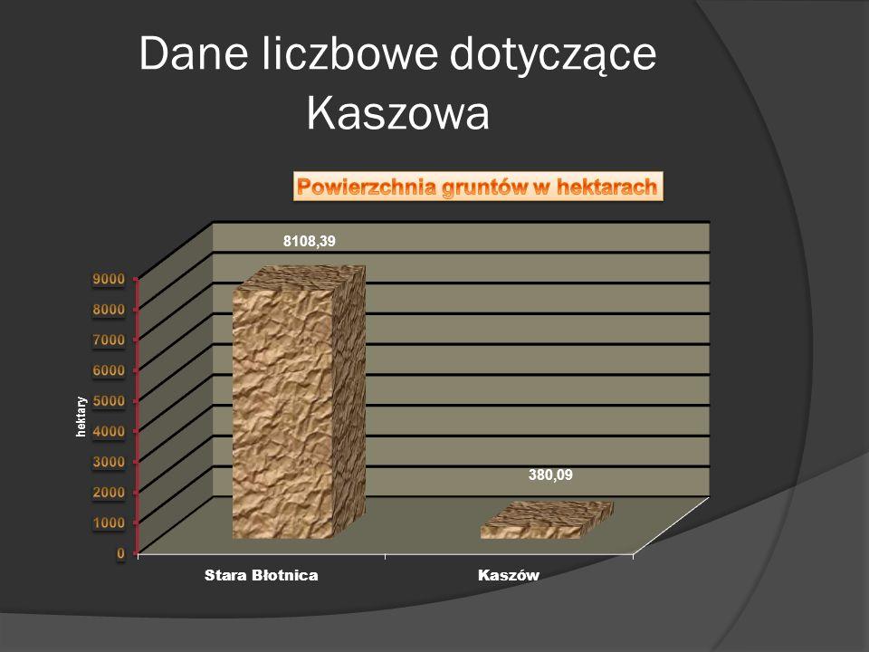 Dane liczbowe dotyczące Kaszowa