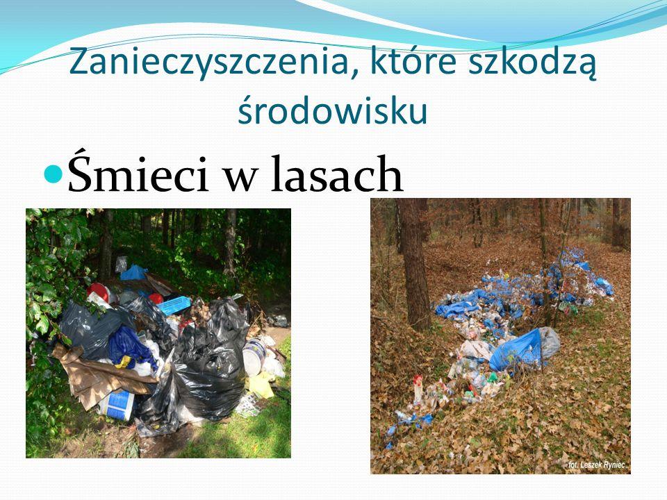 Zanieczyszczenia, które szkodzą środowisku Śmieci w lasach