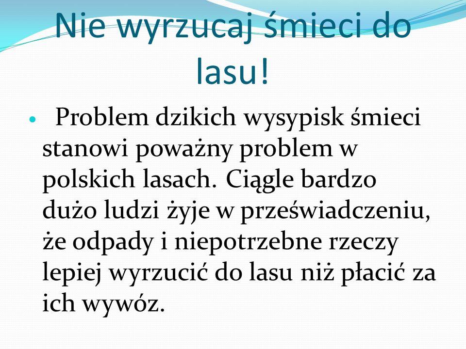 Nie wyrzucaj śmieci do lasu! Problem dzikich wysypisk śmieci stanowi poważny problem w polskich lasach. Ciągle bardzo dużo ludzi żyje w przeświadczeni