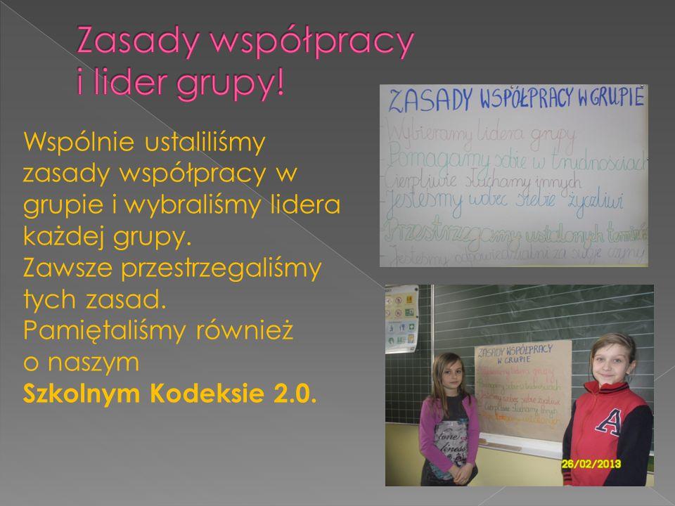 Wspólnie ustaliliśmy zasady współpracy w grupie i wybraliśmy lidera każdej grupy.