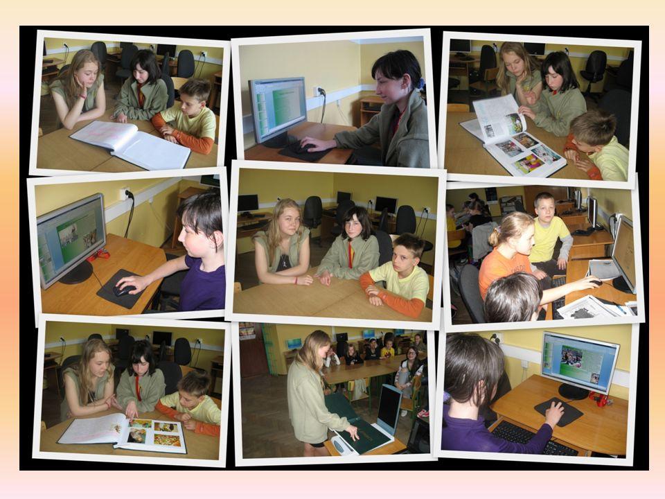 Kronika Szkoły rok 2010/2011