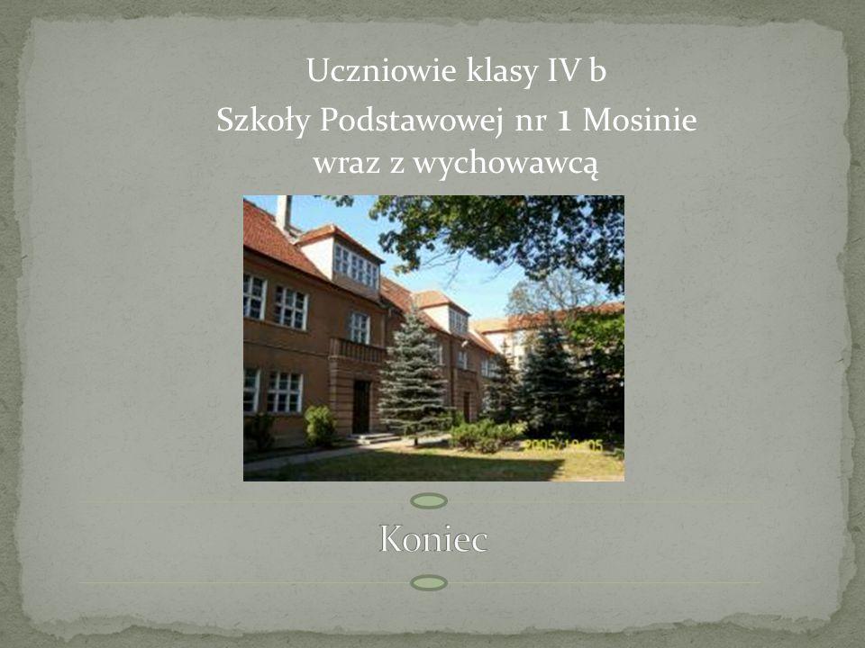 Drewniana wieża widokowa pozwalająca zobaczyć Wielkopolski Park Narodowy i okolice Mosiny z wysokości 17 metrów.
