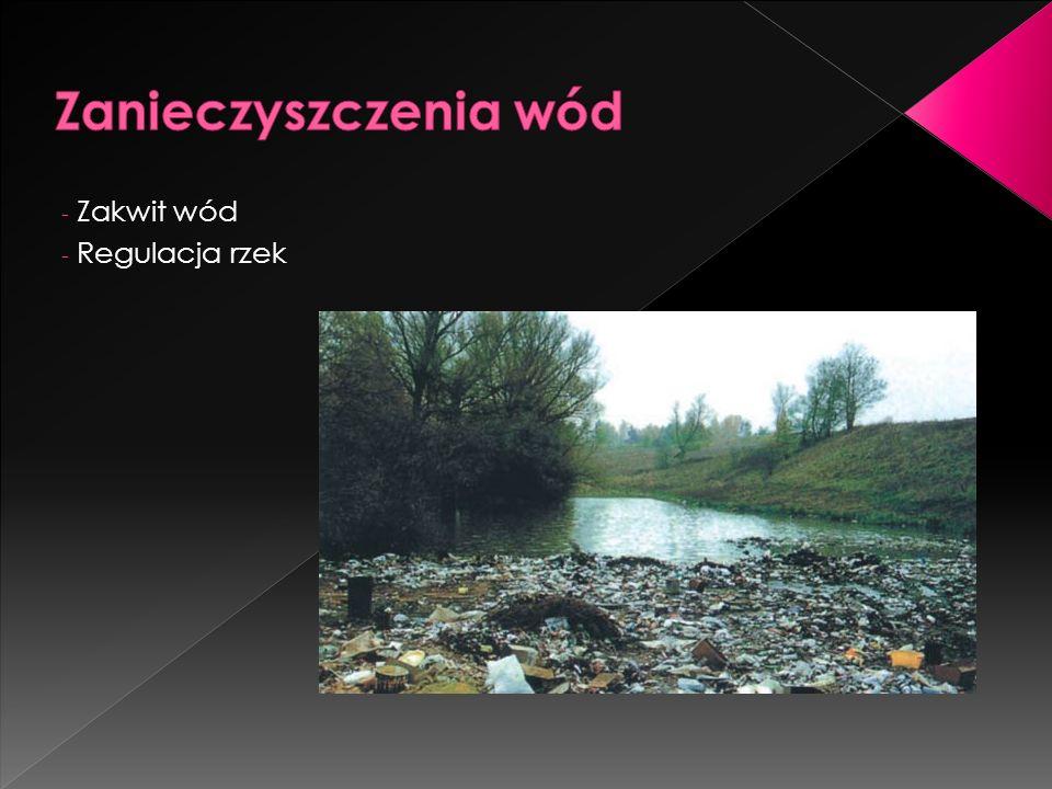 - Zakwit wód - Regulacja rzek