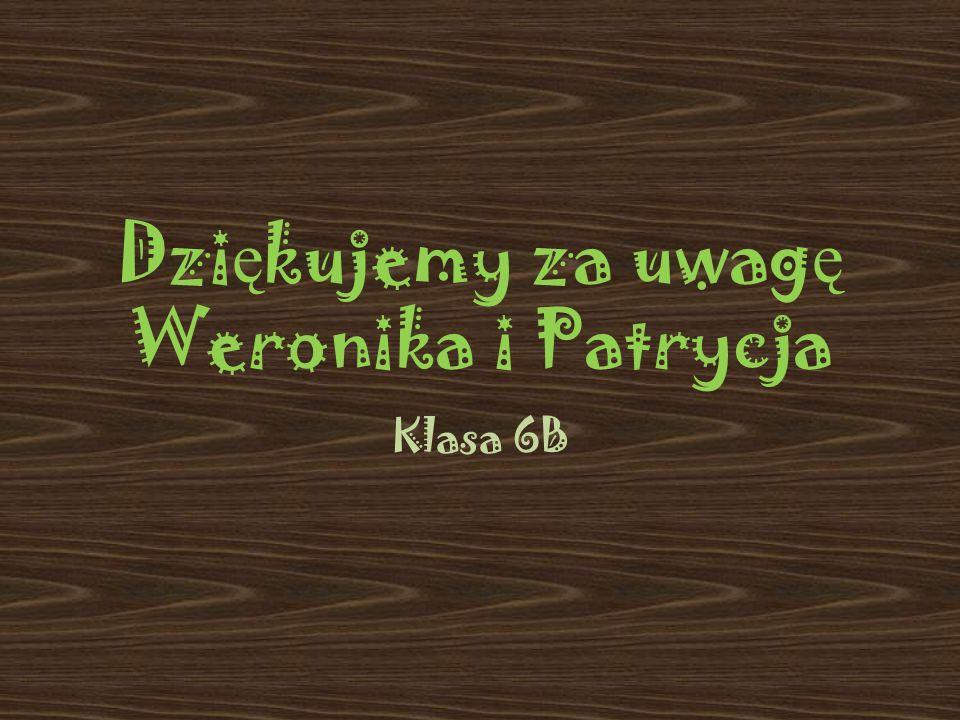Dzi ę kujemy za uwag ę Weronika i Patrycja Klasa 6B