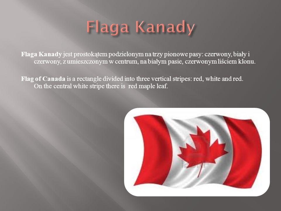 Flaga Kanady jest prostokątem podzielonym na trzy pionowe pasy: czerwony, biały i czerwony, z umieszczonym w centrum, na białym pasie, czerwonym liściem klonu.