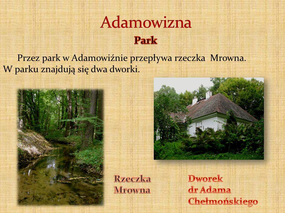 Przez park w Adamowiźnie przepływa rzeczka Mrowna. W parku znajdują się dwa dworki.