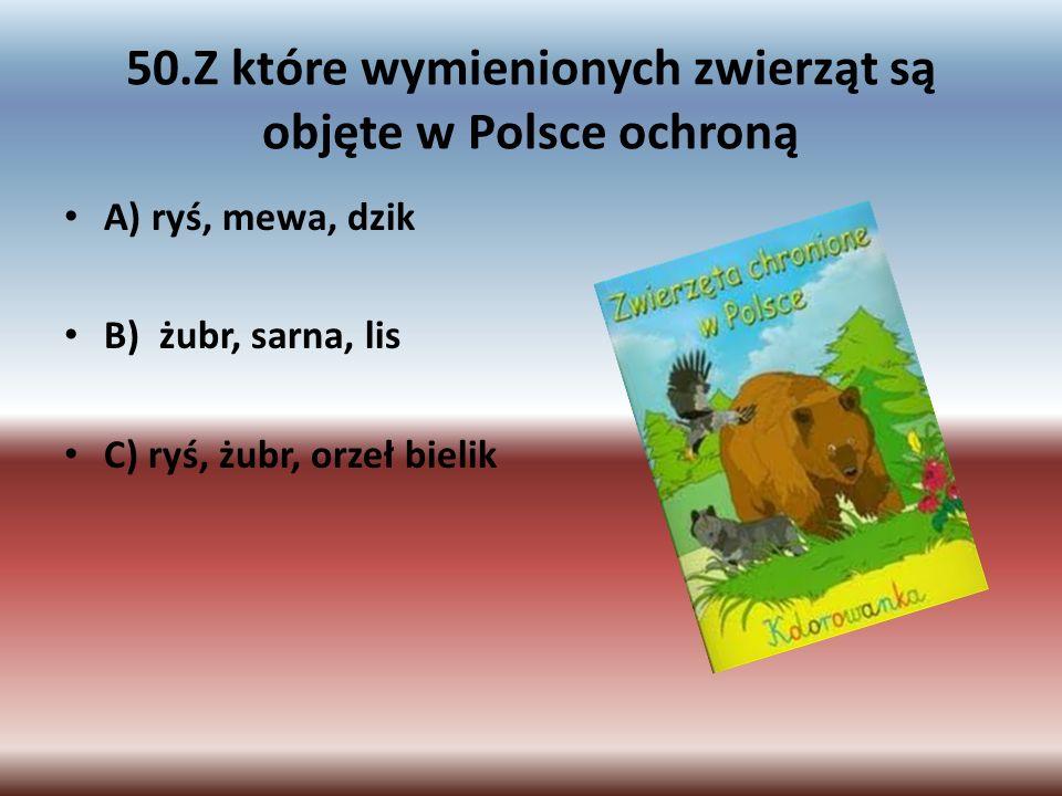 50.Z które wymienionych zwierząt są objęte w Polsce ochroną A) ryś, mewa, dzik B) żubr, sarna, lis C) ryś, żubr, orzeł bielik