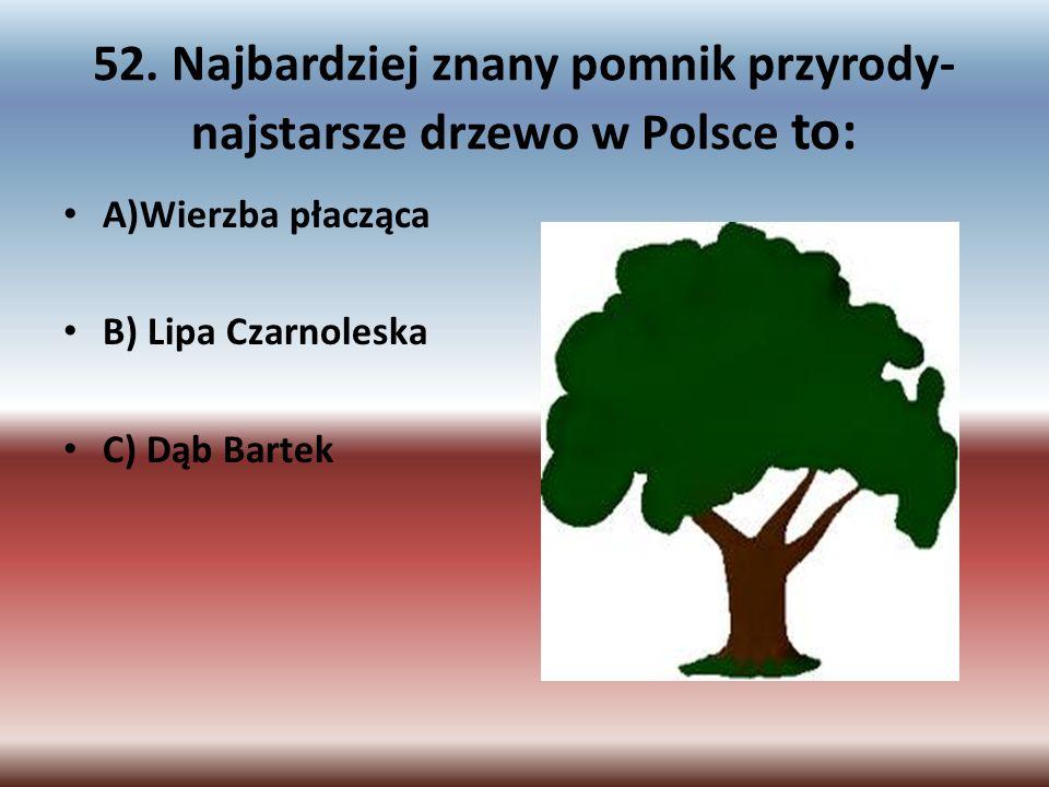 52. Najbardziej znany pomnik przyrody- najstarsze drzewo w Polsce to: A)Wierzba płacząca B) Lipa Czarnoleska C) Dąb Bartek