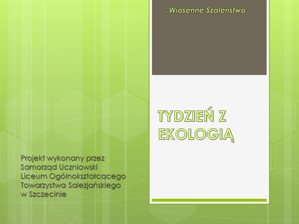 Projekt wykonany przez Samorząd Uczniowski Liceum Ogólnokształcącego Towarzystwa Salezjańskiego w Szczecinie