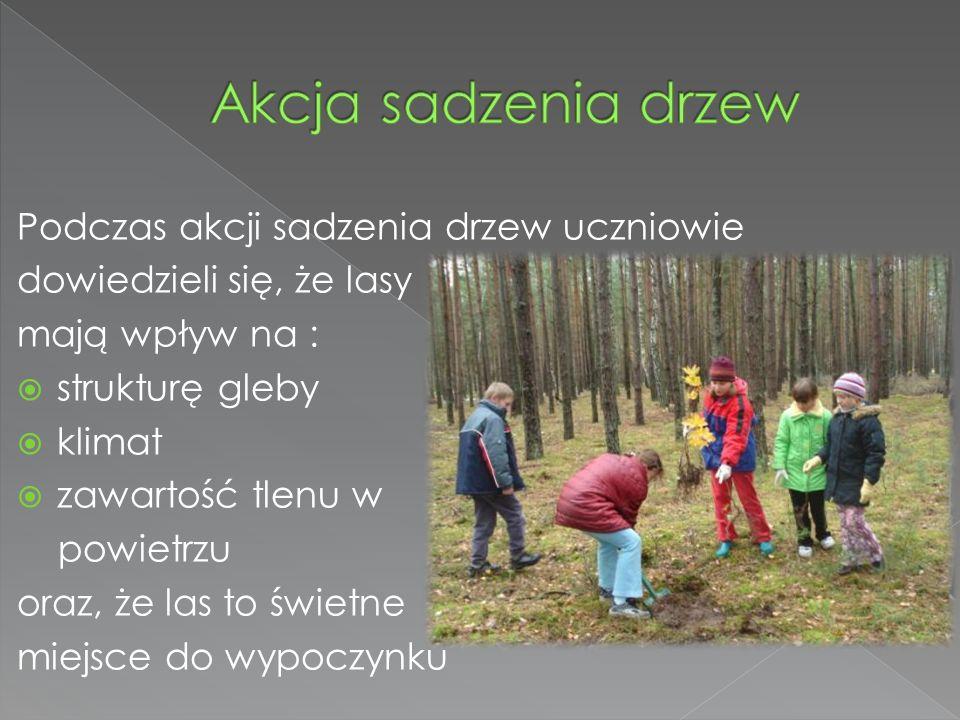 Podczas akcji sadzenia drzew uczniowie dowiedzieli się, że lasy mają wpływ na : strukturę gleby klimat zawartość tlenu w powietrzu oraz, że las to świetne miejsce do wypoczynku