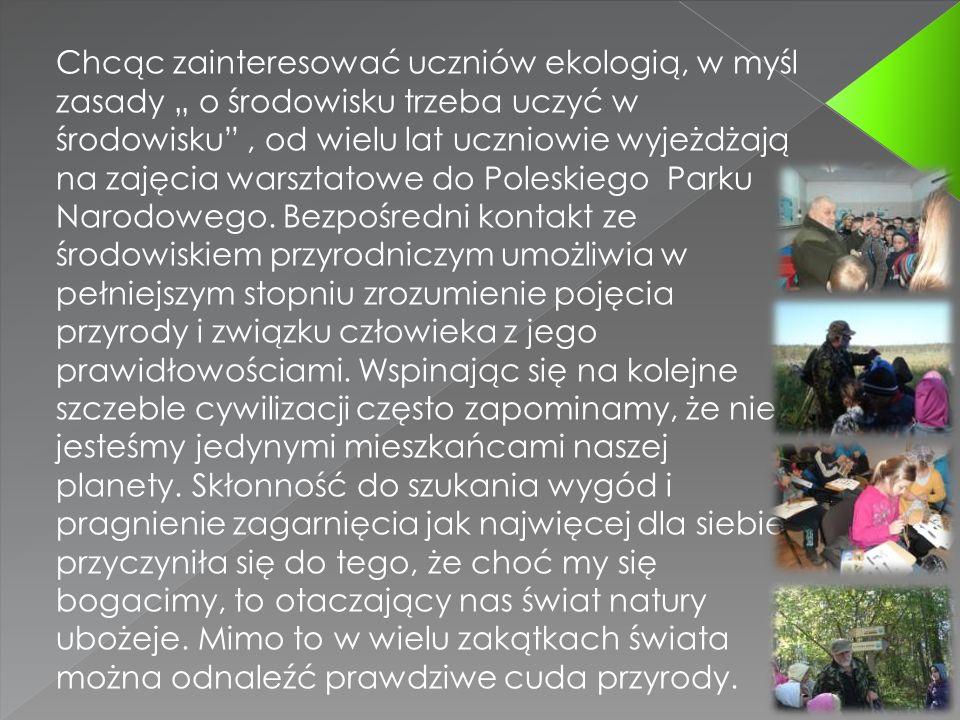 Chcąc zainteresować uczniów ekologią, w myśl zasady o środowisku trzeba uczyć w środowisku, od wielu lat uczniowie wyjeżdżają na zajęcia warsztatowe do Poleskiego Parku Narodowego.