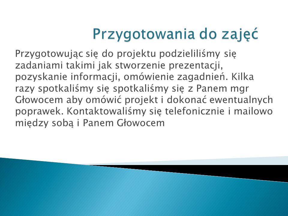 Przygotowując się do projektu podzieliliśmy się zadaniami takimi jak stworzenie prezentacji, pozyskanie informacji, omówienie zagadnień. Kilka razy sp