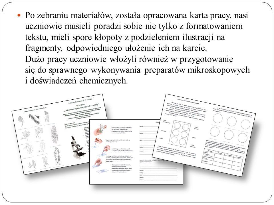 Po zebraniu materiałów, została opracowana karta pracy, nasi uczniowie musieli poradzi sobie nie tylko z formatowaniem tekstu, mieli spore kłopoty z podzieleniem ilustracji na fragmenty, odpowiedniego ułożenie ich na karcie.