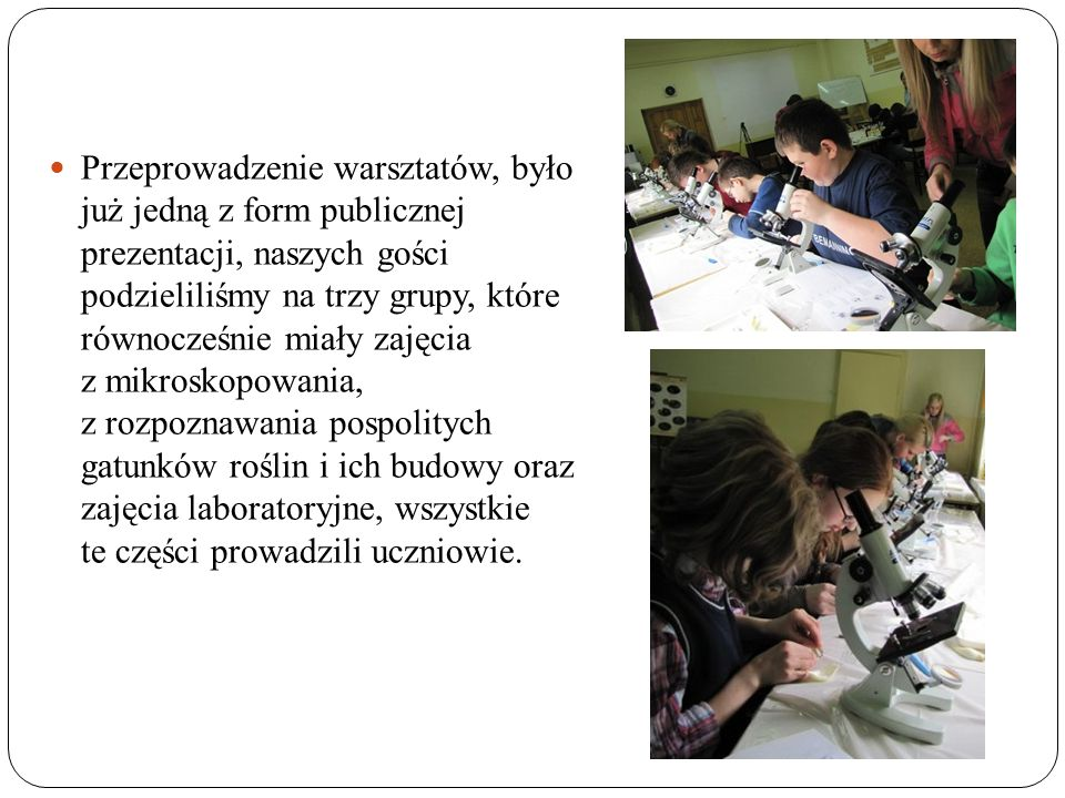 Przeprowadzenie warsztatów, było już jedną z form publicznej prezentacji, naszych gości podzieliliśmy na trzy grupy, które równocześnie miały zajęcia z mikroskopowania, z rozpoznawania pospolitych gatunków roślin i ich budowy oraz zajęcia laboratoryjne, wszystkie te części prowadzili uczniowie.