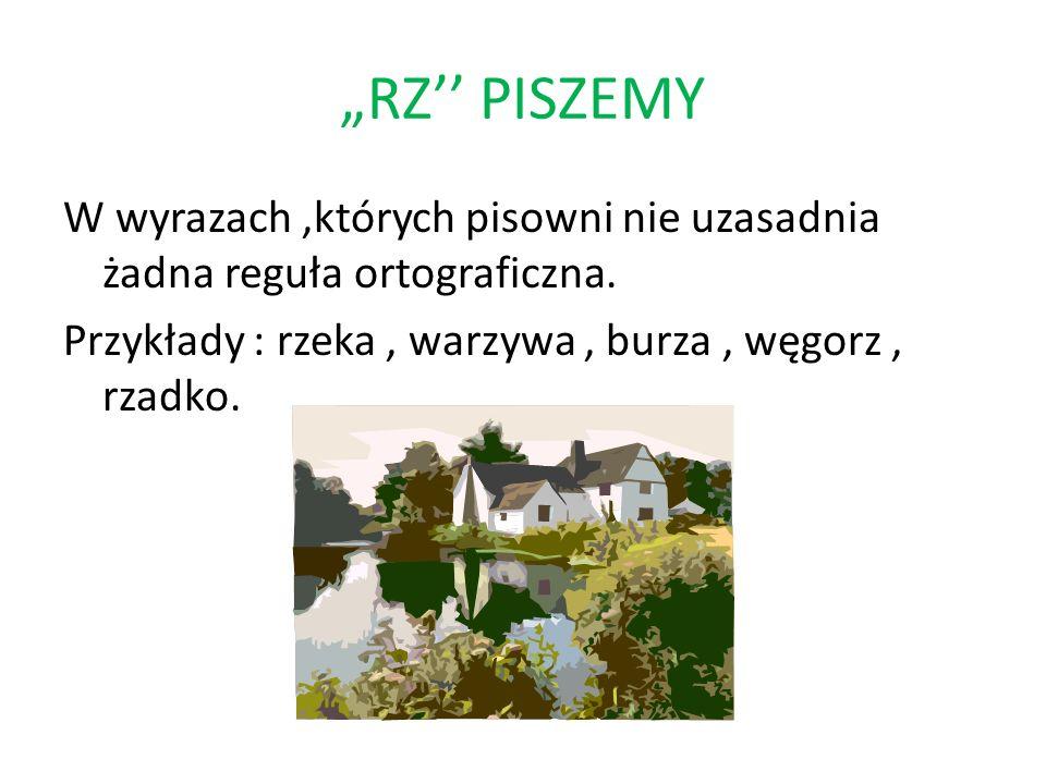 RZ PISZEMY W wyrazach,których pisowni nie uzasadnia żadna reguła ortograficzna. Przykłady : rzeka, warzywa, burza, węgorz, rzadko.