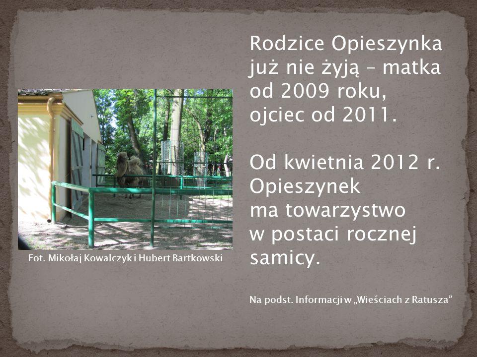 Rodzice Opieszynka już nie żyją – matka od 2009 roku, ojciec od 2011.