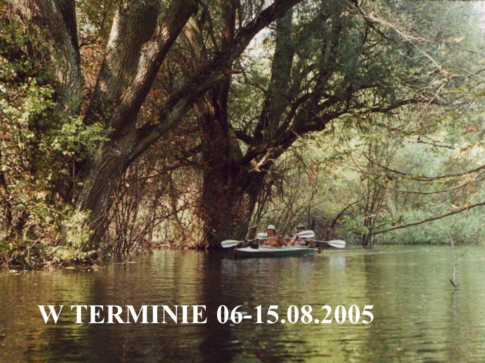 W TERMINIE 06-15.08.2005