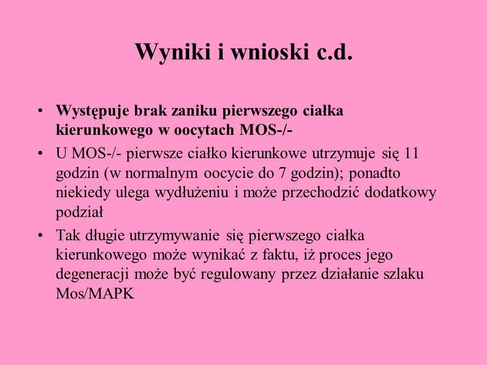 Wyniki i wnioski c.d.