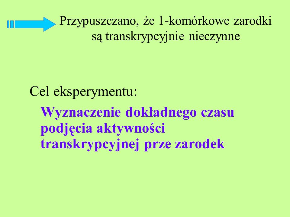 Przypuszczano, że 1-komórkowe zarodki są transkrypcyjnie nieczynne Cel eksperymentu: Wyznaczenie dokładnego czasu podjęcia aktywności transkrypcyjnej