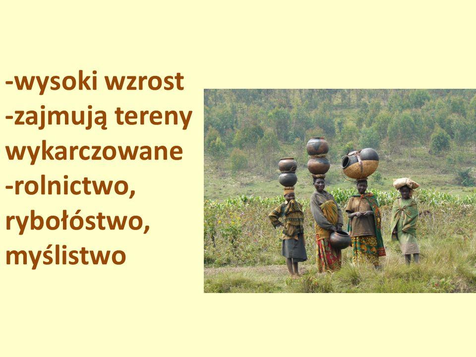 -wysoki wzrost -zajmują tereny wykarczowane -rolnictwo, rybołóstwo, myślistwo