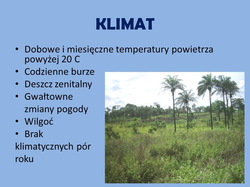KLIMAT Dobowe i miesięczne temperatury powietrza powyżej 20 C Codzienne burze Deszcz zenitalny Gwałtowne zmiany pogody Wilgoć Brak klimatycznych pór roku