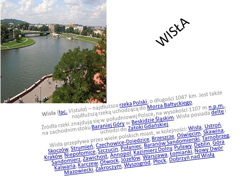 WISŁA Wisła (łac. Vistula) – najdłuższa rzeka Polski, o długości 1047 km. Jest także najdłuższą rzeką uchodzącą do Morza Bałtyckiego.łac.rzekaPolskiMo