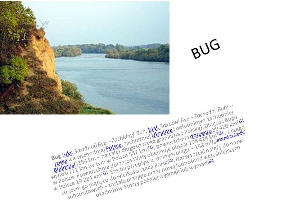 NAREW Narew – rzeka przepływająca przez północno-wschodnią Polskę.rzekaPolskę Prawy dopływ Wisły (do 1962 rzeka była uważana za prawostronny dopływ Bugu; zobacz też: Bugonarew).