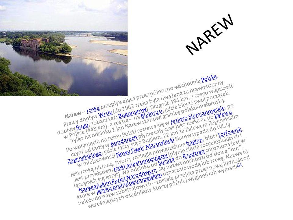 NAREW Narew – rzeka przepływająca przez północno-wschodnią Polskę.rzekaPolskę Prawy dopływ Wisły (do 1962 rzeka była uważana za prawostronny dopływ Bu