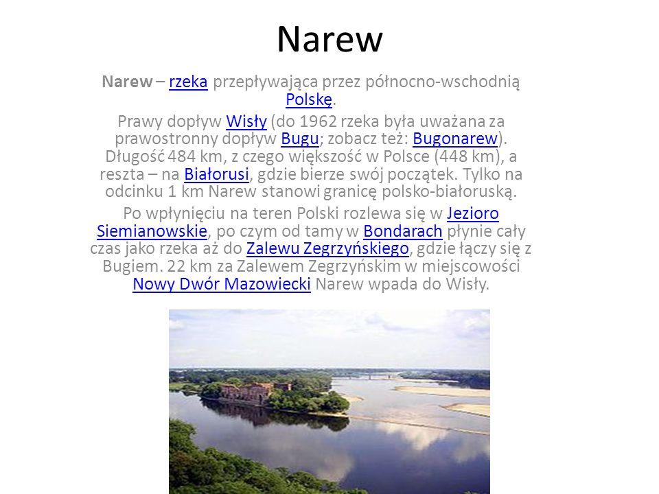 Narew Narew – rzeka przepływająca przez północno-wschodnią Polskę.rzeka Polskę Prawy dopływ Wisły (do 1962 rzeka była uważana za prawostronny dopływ B