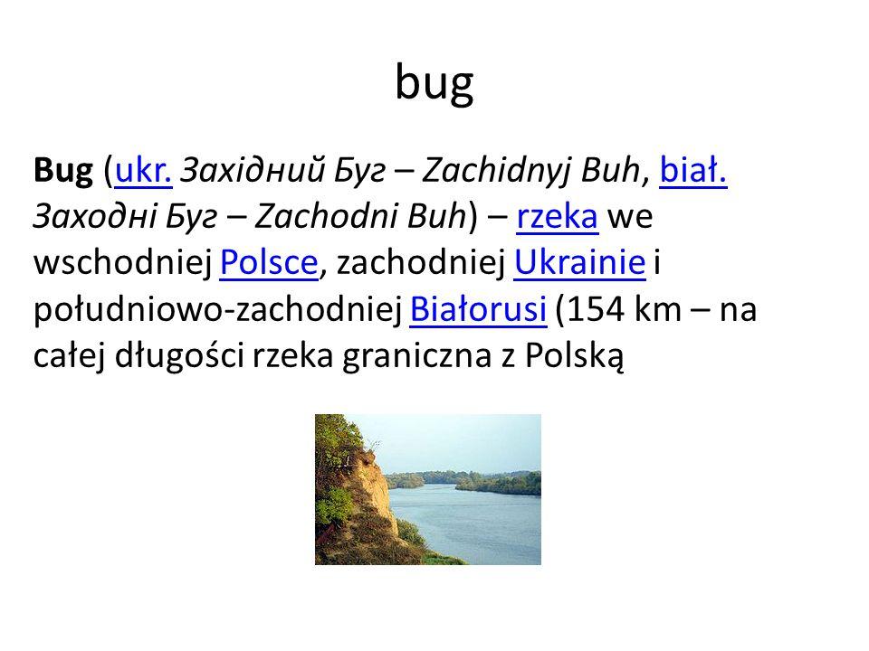 bug Bug (ukr. Західний Буг – Zachidnyj Buh, biał. Заходні Буг – Zachodni Buh) – rzeka we wschodniej Polsce, zachodniej Ukrainie i południowo-zachodnie
