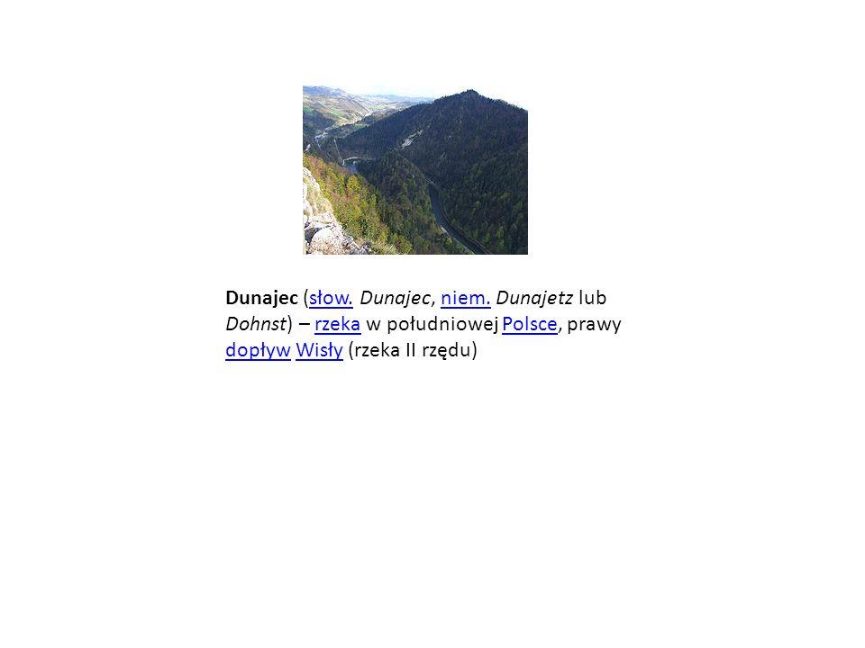 Dunajec (słow. Dunajec, niem. Dunajetz lub Dohnst) – rzeka w południowej Polsce, prawy dopływ Wisły (rzeka II rzędu)słow.niem.rzekaPolsce dopływWisły