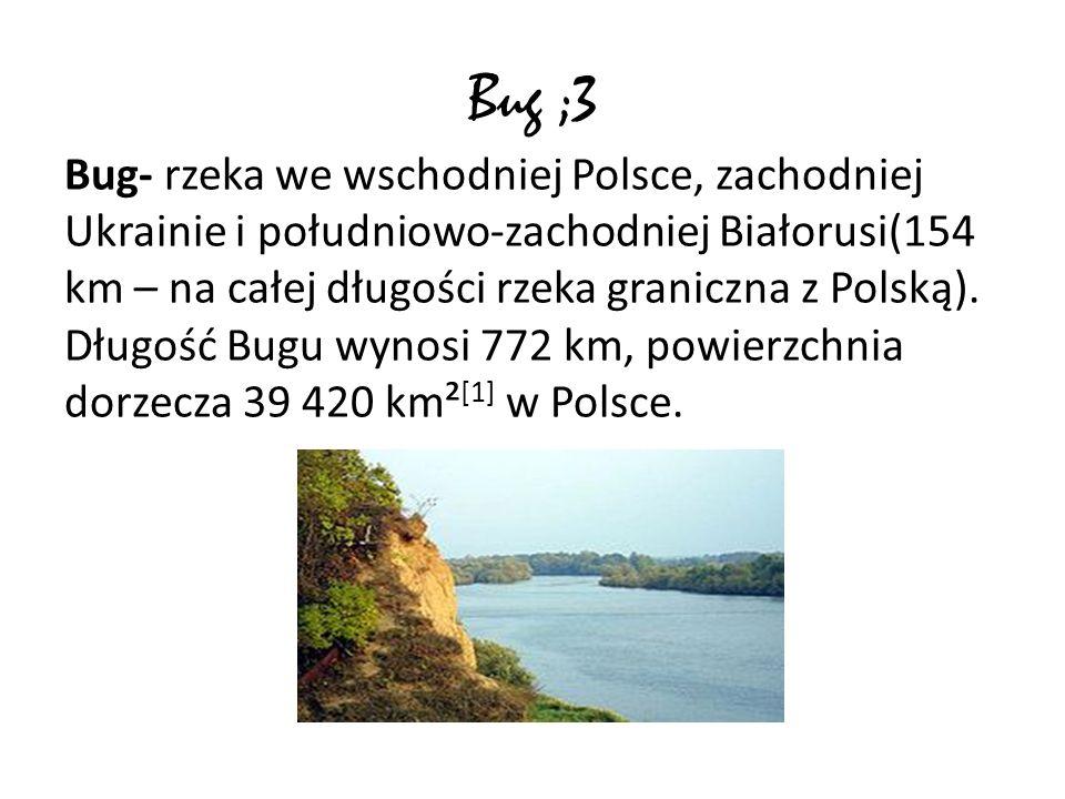 Bug ;3 Bug- rzeka we wschodniej Polsce, zachodniej Ukrainie i południowo-zachodniej Białorusi(154 km – na całej długości rzeka graniczna z Polską). Dł