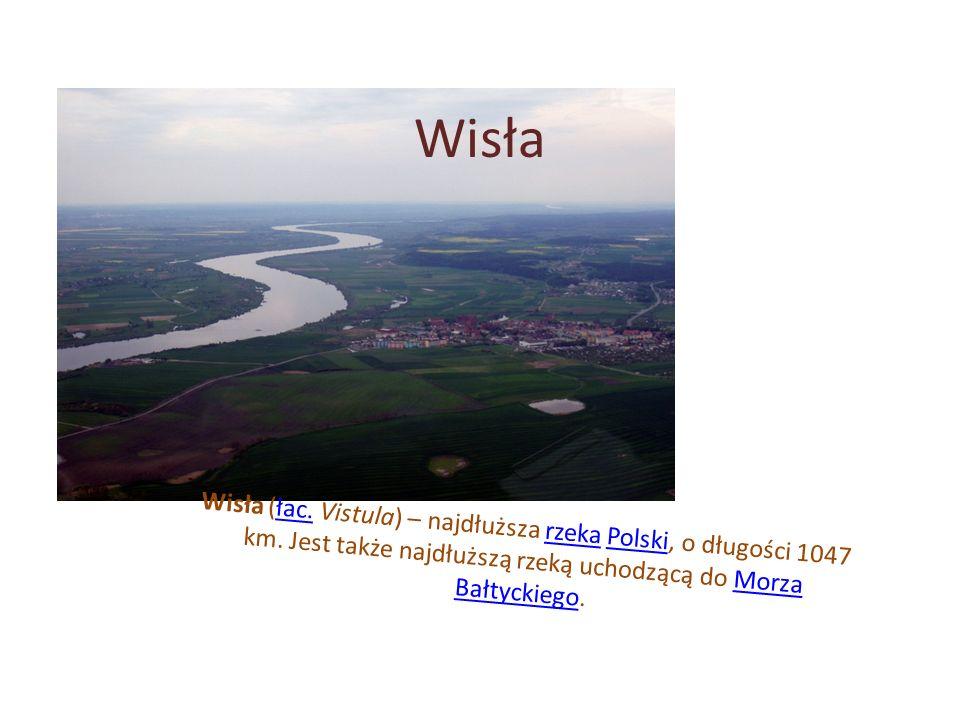 Wisła Wisła (łac.Vistula) – najdłuższa rzeka Polski, o długości 1047 km.