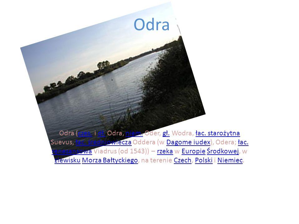 Odra Odra (czes. i dł. Odra, niem. Oder, gł. Wodra, łac. starożytna Suevus, łac. średniowiecza Oddera (w Dagome iudex), Odera; łac. renesansowa Viadru