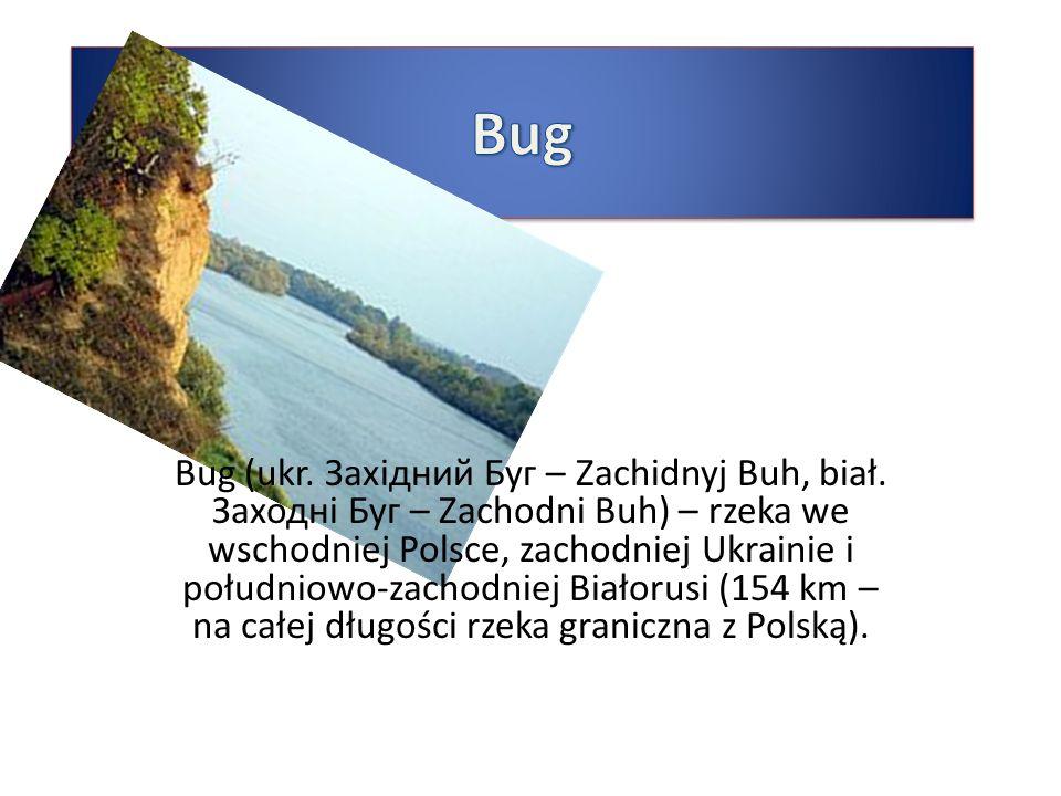 Bug (ukr. Західний Буг – Zachidnyj Buh, biał. Заходні Буг – Zachodni Buh) – rzeka we wschodniej Polsce, zachodniej Ukrainie i południowo-zachodniej Bi