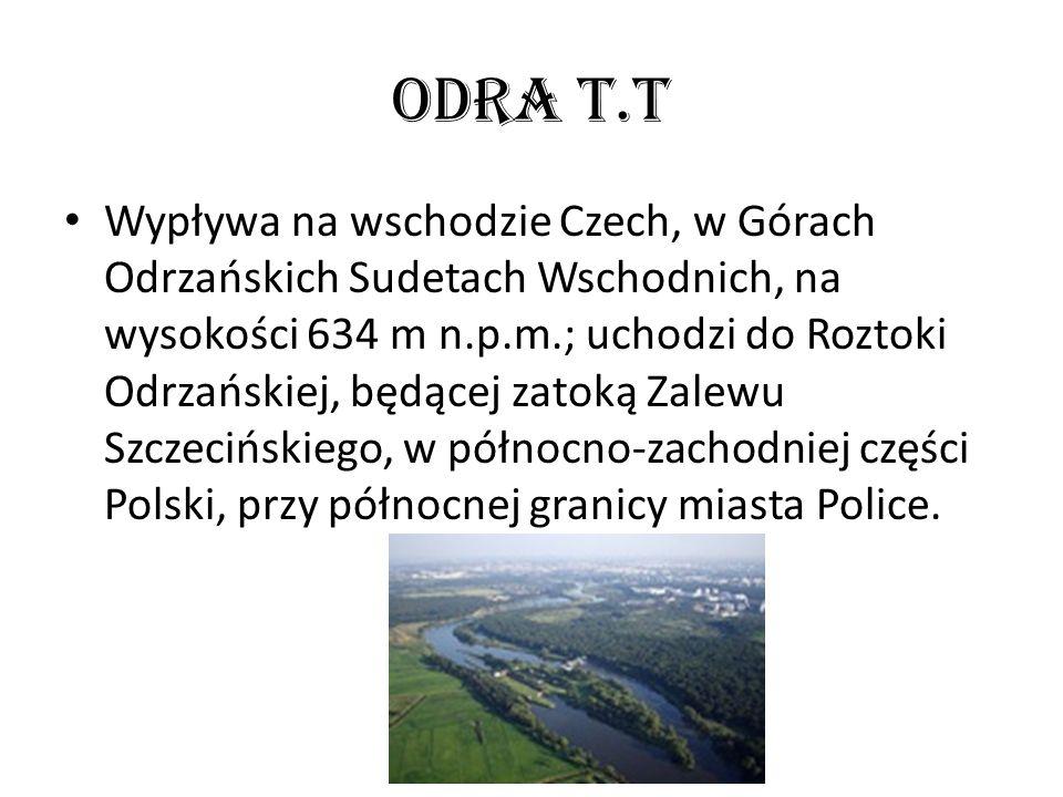 Odra T.T Wypływa na wschodzie Czech, w Górach Odrzańskich Sudetach Wschodnich, na wysokości 634 m n.p.m.; uchodzi do Roztoki Odrzańskiej, będącej zato