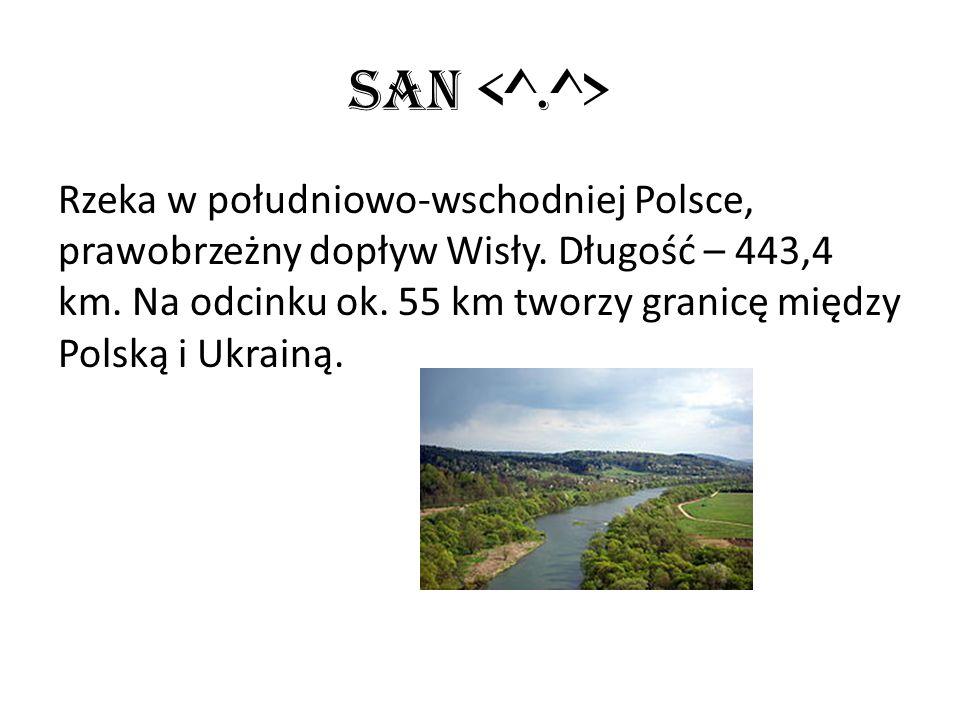 San Rzeka w południowo-wschodniej Polsce, prawobrzeżny dopływ Wisły. Długość – 443,4 km. Na odcinku ok. 55 km tworzy granicę między Polską i Ukrainą.