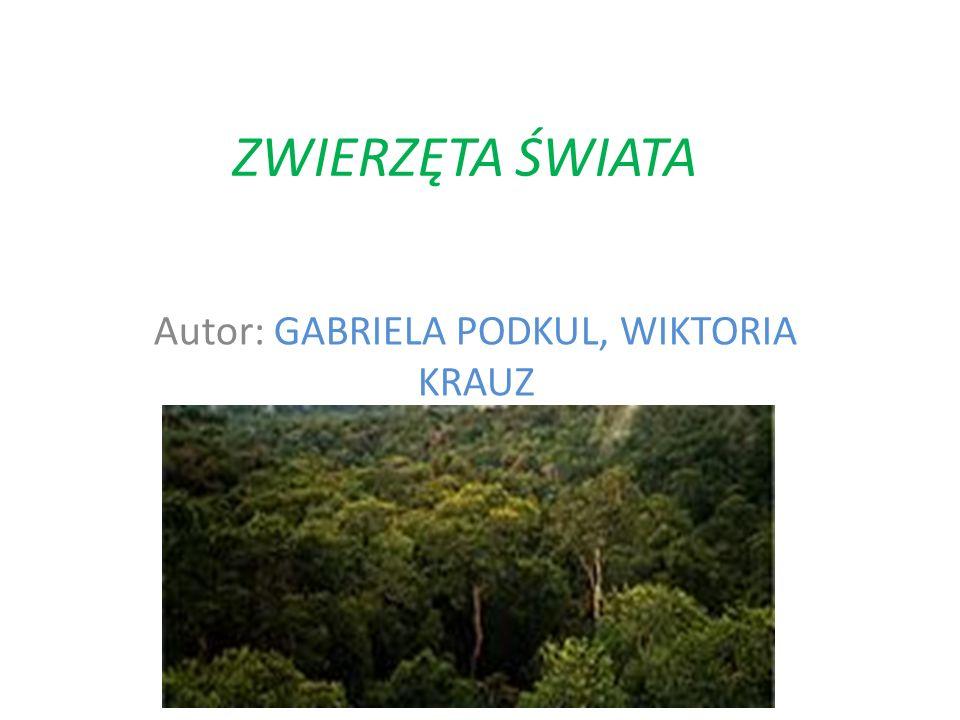 ZWIERZĘTA ŚWIATA Autor: GABRIELA PODKUL, WIKTORIA KRAUZ