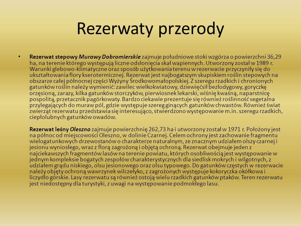 Rezerwaty przerody Rezerwat stepowy Murawy Dobromierskie zajmuje południowe stoki wzgórza o powierzchni 36,29 ha, na terenie którego występują liczne