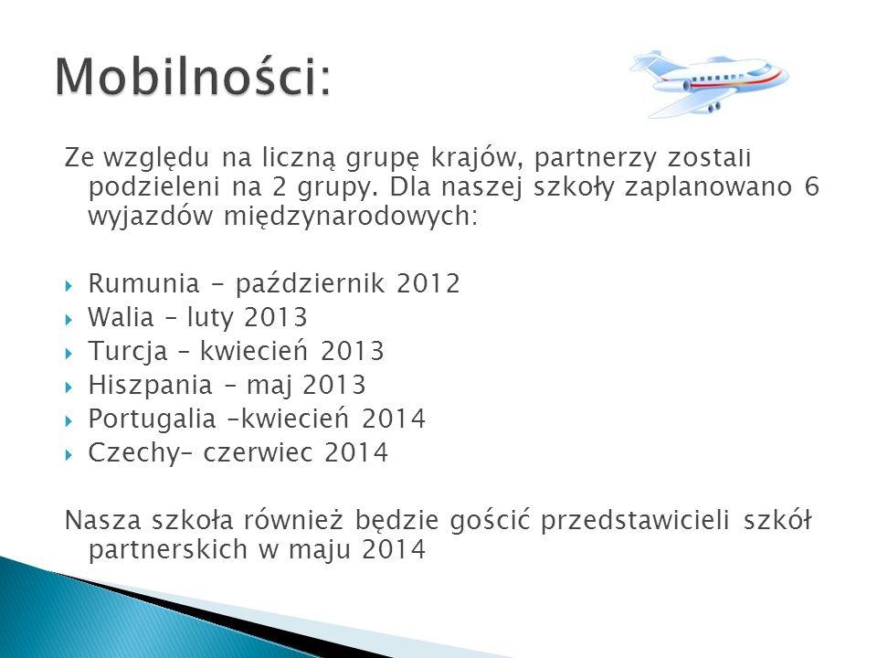 Ze względu na liczną grupę krajów, partnerzy zostali podzieleni na 2 grupy. Dla naszej szkoły zaplanowano 6 wyjazdów międzynarodowych: Rumunia - paźdz