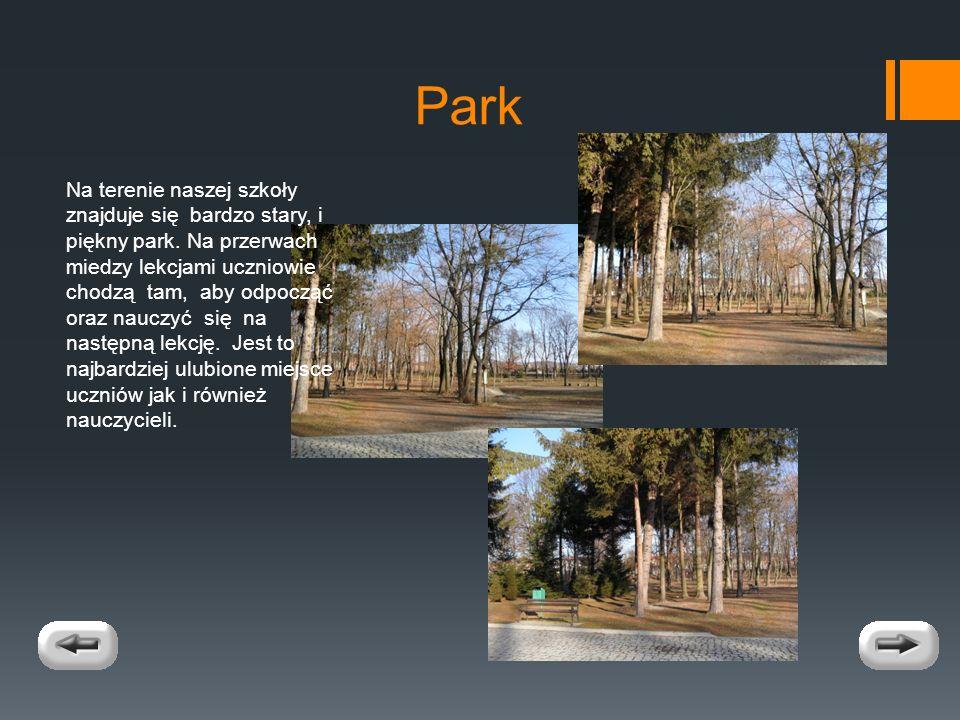 Park Na terenie naszej szkoły znajduje się bardzo stary, i piękny park.