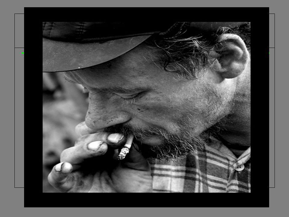 Palić? Nie palić? palenie uzależnia jest chorobą powoduje palenie uzależnia jest chorobą powoduje jest drogie groźne dla życia jest drogie groźne dla